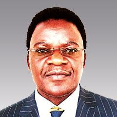 Professor Dr. Michael D. B. Munkumba